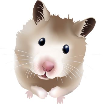 Fuzzy clipart hamster #13