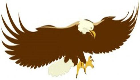 Gallery clipart soaring eagle Vector Free Gallery Vector Soaring