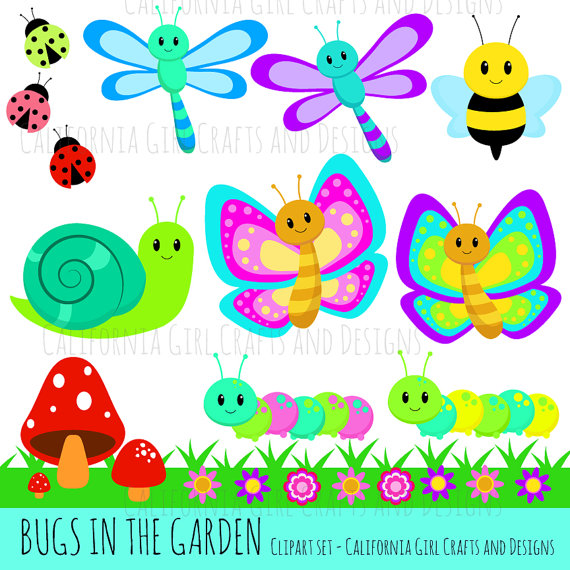 Bugs clipart garden insect In Set in Butterflies Snail