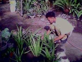 Garden clipart nagtatanim Pagligtas ng Kalikasan!! sa ating