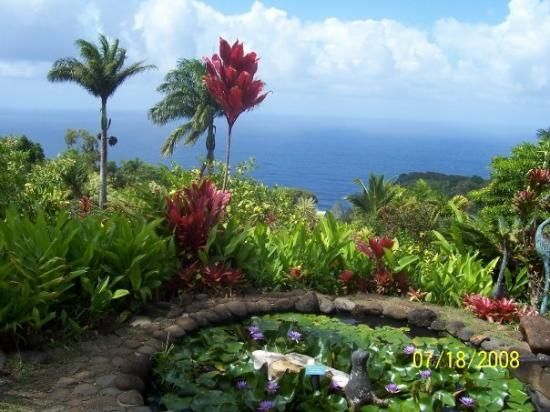 Garden Of Eden clipart maui Arboretum Pinterest Picture Of 21