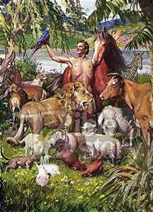 Garden Of Eden clipart maui Images Can In Eden I'm