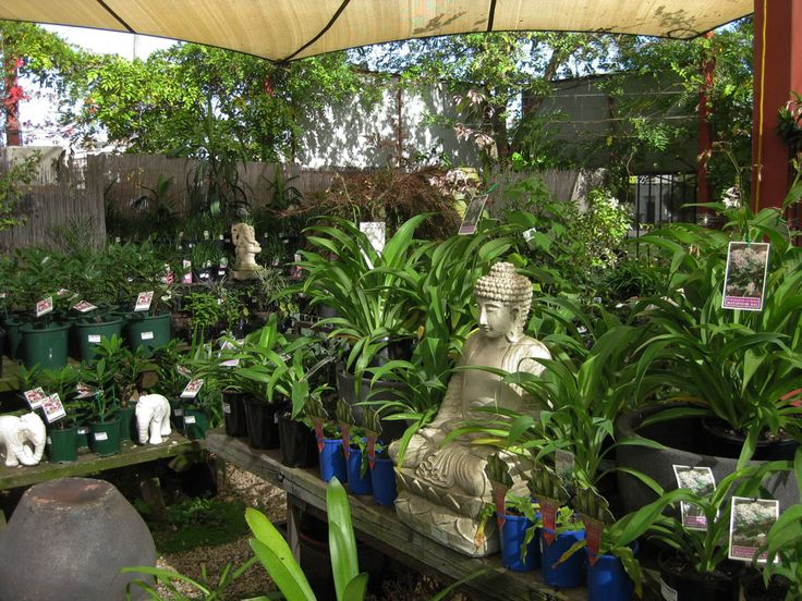 Garden Of Eden clipart taman eden In a Park of on