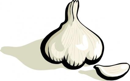 Garlic clipart Garlic%20clipart Garlic 20clipart Images Clipart