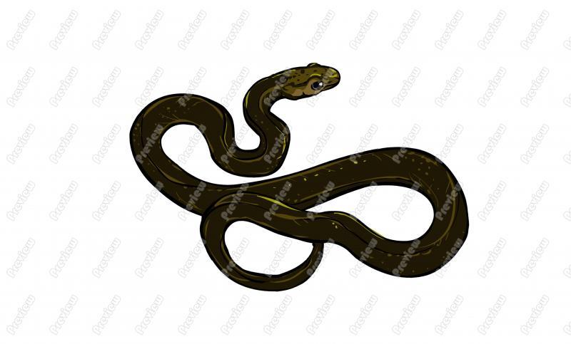 Garter Snake clipart Snake Character Clipart Art Garter