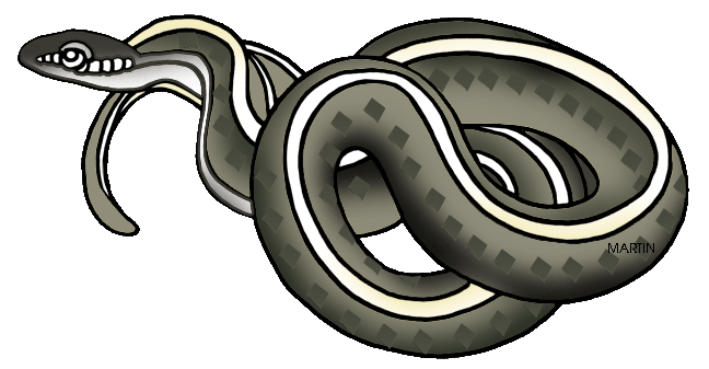Garter Snake clipart State Clip Massachusetts by United