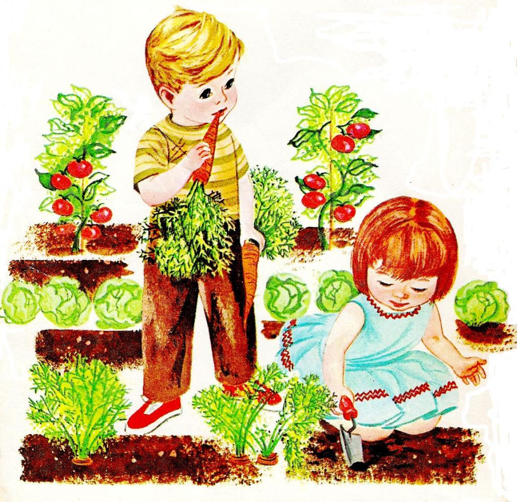 Background clipart vegetable garden #12