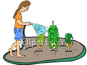 Gate clipart vegetable patch Vegetable%20garden%20clipart Free Clipart Border Garden