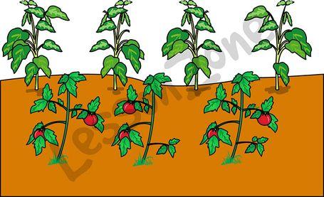 Gate clipart vegetable patch Garden%20clipart Free Clipart Art Clip