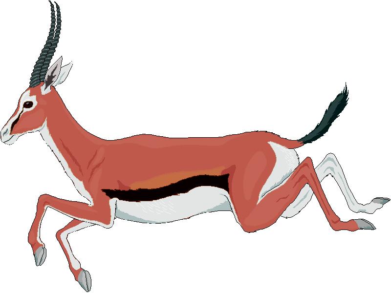Gazelle clipart Art Clipart Clipart Panda Free