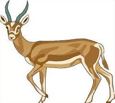 Gazelle clipart Gazelle Image Clipart Free Clipart