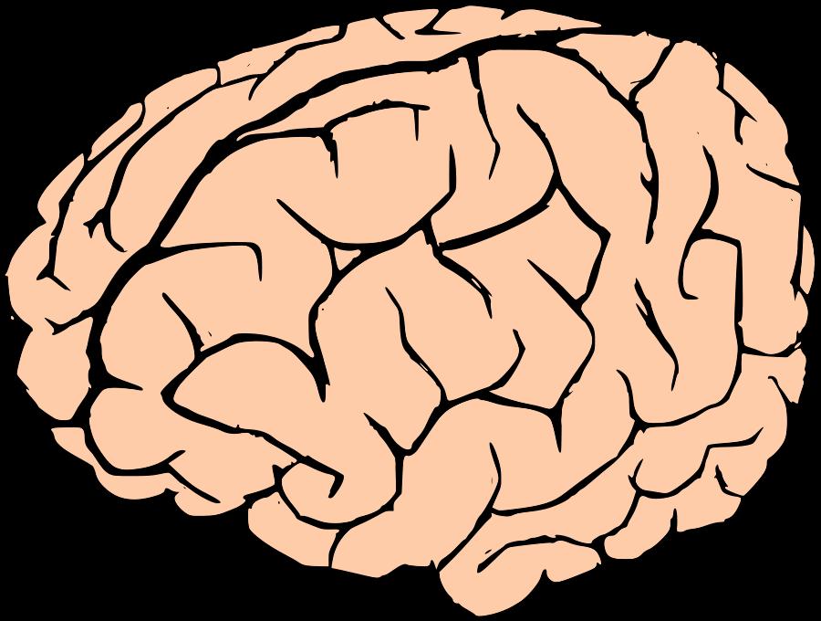 Brains clipart cartoon Com gears brain Cliparting clipart