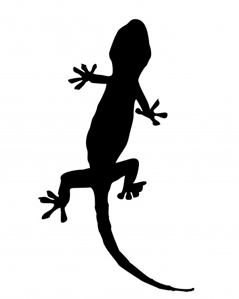 Black clipart gecko Clipart Pictures Stock  Silhouette