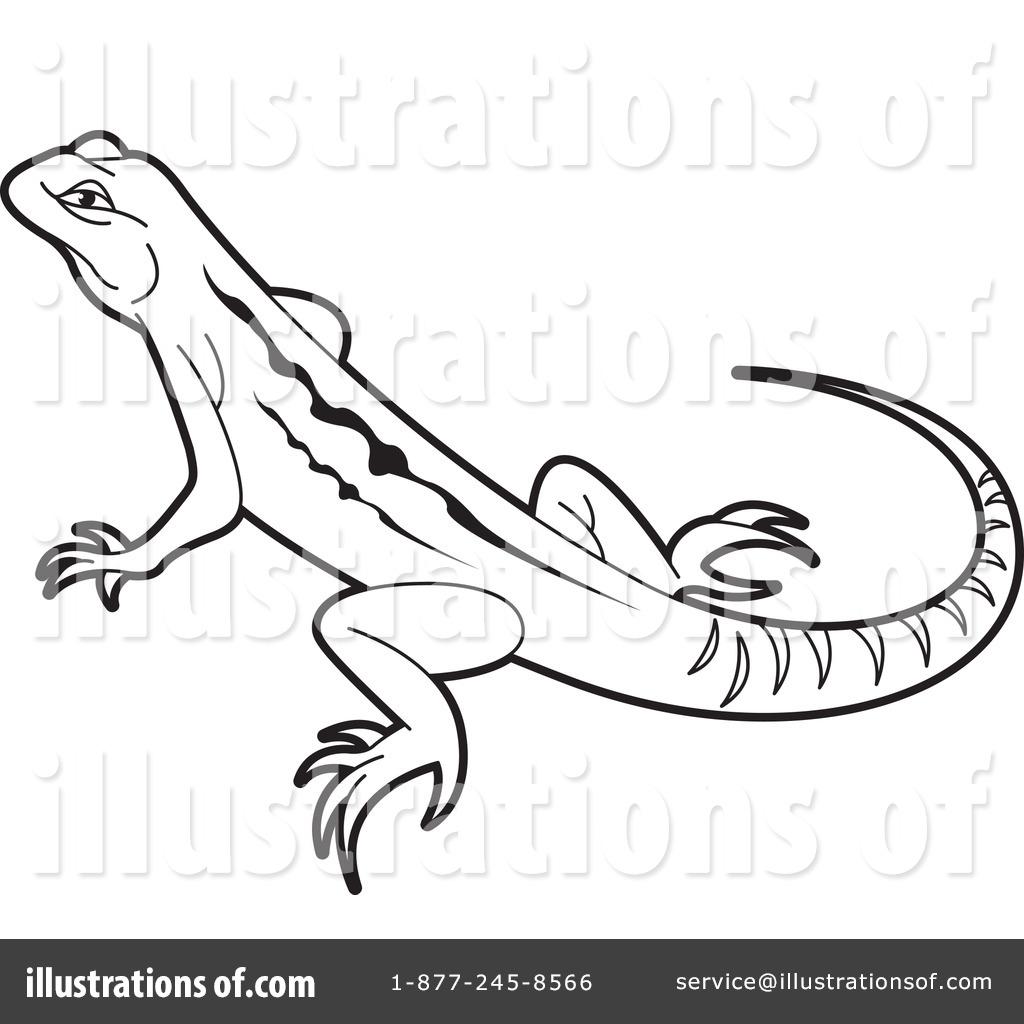 Drawn reptile clipart black and white Art 67 Clipart clip iguana