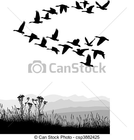 Geese Migration clipart In geese csp3882425 Migrating Vector