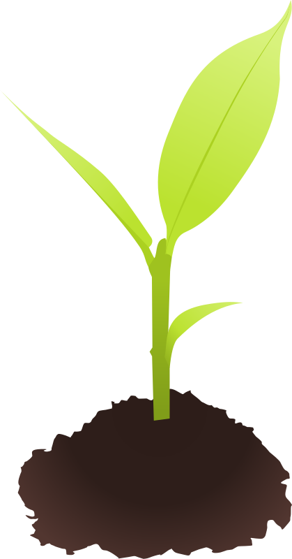 Soil clipart tree sprout & Sprout Use to