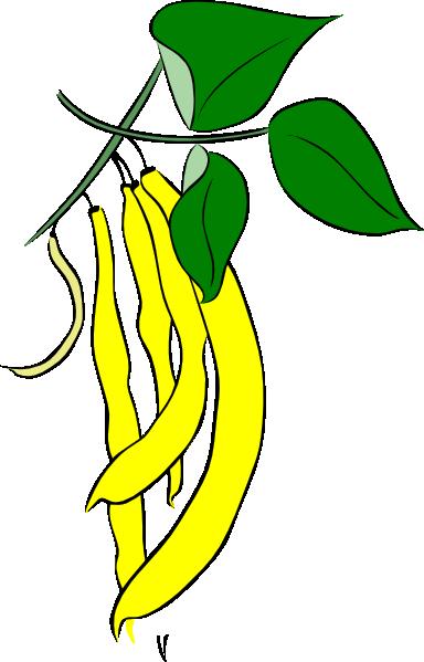 Lima Beans clipart runner bean Bean Clip Art String Characters
