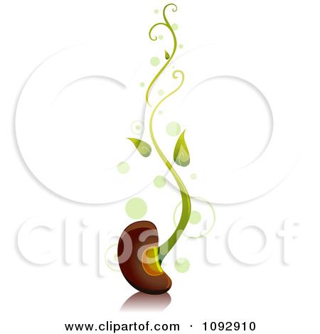 Bean clipart bean sprout Fans Clipart 0 bean art