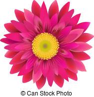 Gerbera clipart Vector 1 483 Clipart Pink