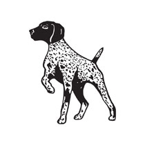 German Shorthaired Pointer clipart Shorthaired German German Gallery For