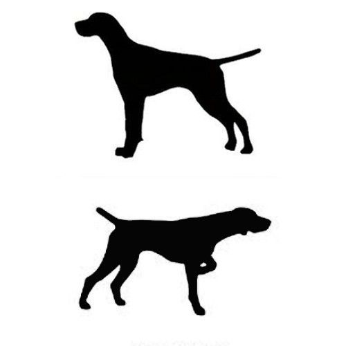German Shorthaired Pointer clipart & in and Sticker Window