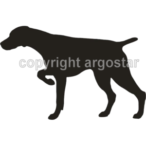 German Shorthaired Pointer clipart  sweatshirts T Shorthaired gsp