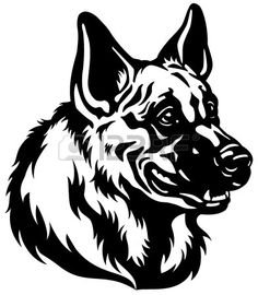 Germany clipart german shepherd puppy White illustration Smoking  german