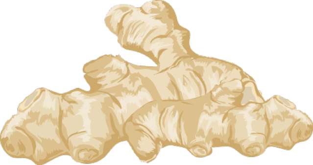 Ginger clipart Free Art Download  on