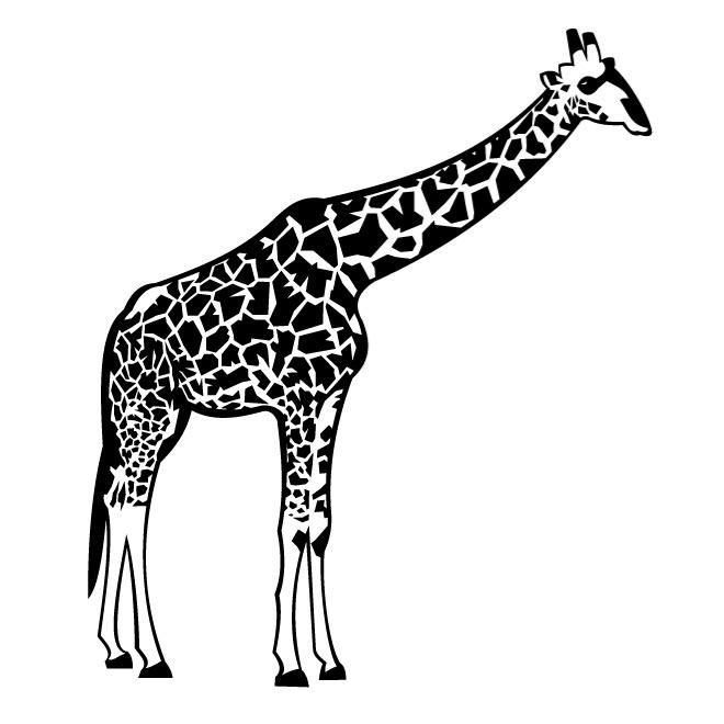 Black & White clipart giraffe White Giraffe com clip giraffe
