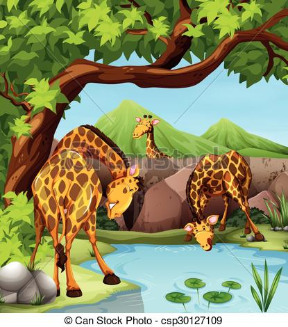 Giraffe clipart drink water Drinking pond of Clipart water