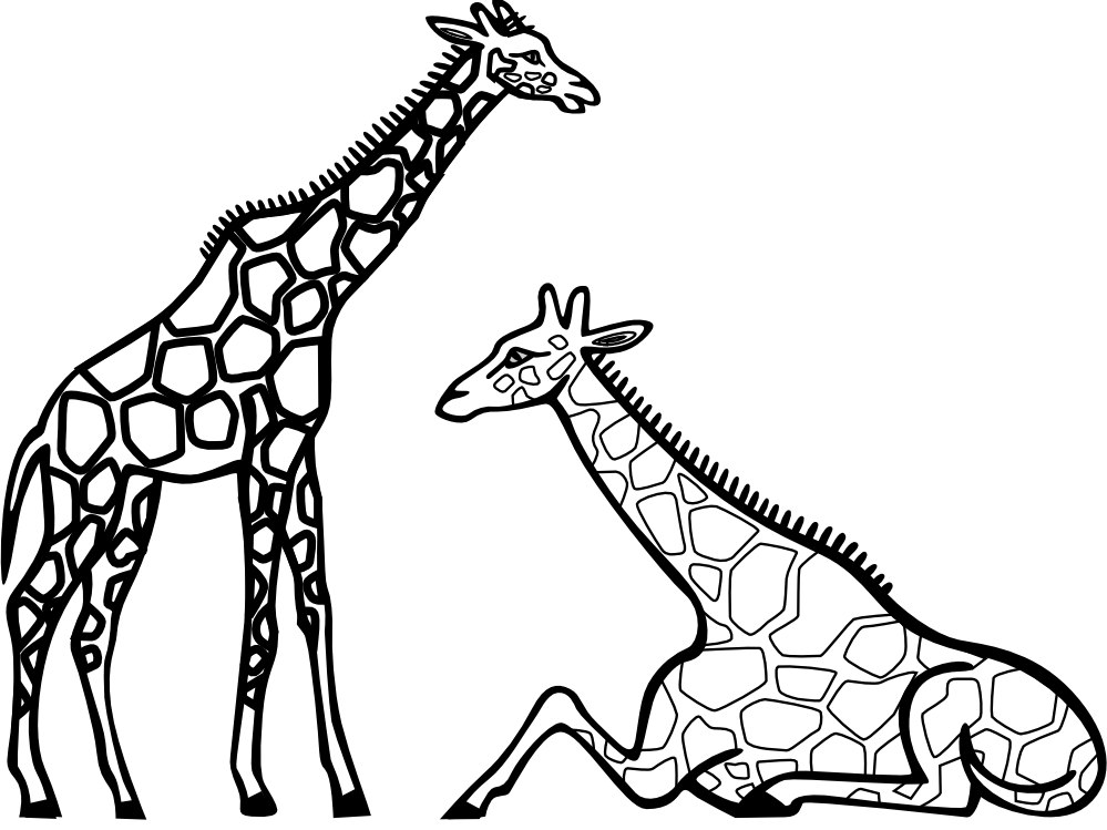 Black & White clipart giraffe Images Giraffe Free Clip White