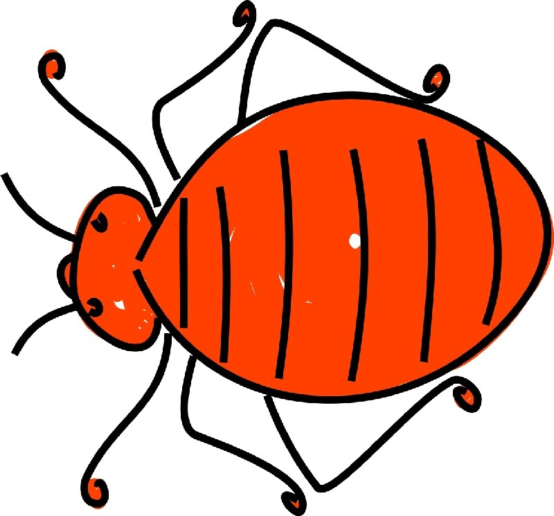 Glitch clipart bed bug Some jpg General Forums Having