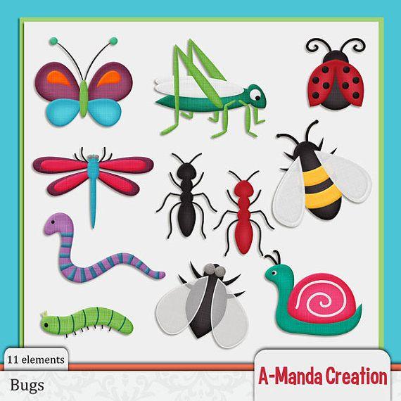 Bugs clipart creepy crawly  Art Bugs Manda Clip