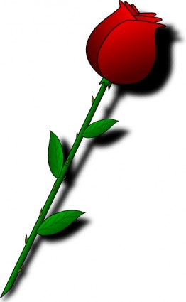 Red Flower clipart valentine rose #1