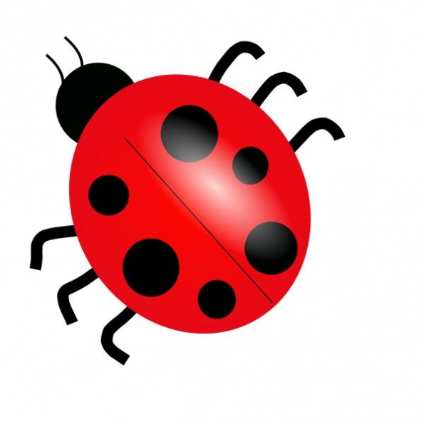 Beetle clipart red bug Page Flowers admin Art Clip