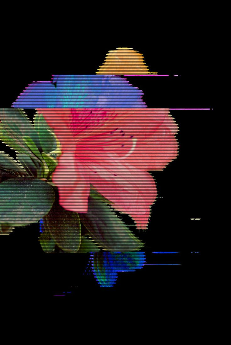 Glitch clipart little flower (via Angeles Be Woo on