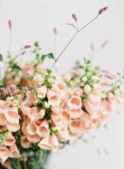 Glitch clipart little flower 25+ Best full Seattle Little
