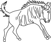 Wildebeest clipart black and white Graphics  wildebeest Animals Art