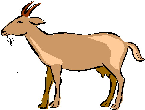 Mountain Goat clipart baby goat #1