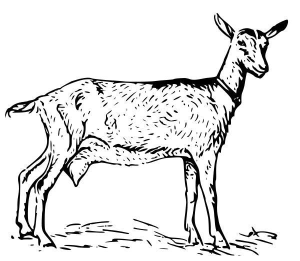 Billy Goat clipart cartoon Of use Goat Clipart Free