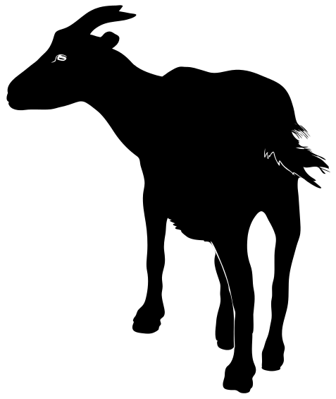 Billy Goat clipart grey Clip 1 Goat of Clipart