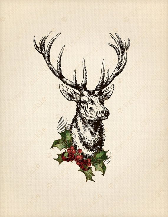 Holydays clipart deer CHRISTMAS Stag graphics Pinterest Instant