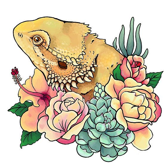 Godzilla clipart bearded dragon Ideas 25+ Pastel Pinterest on