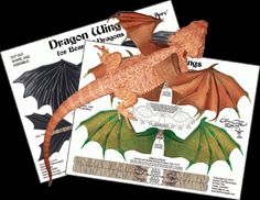 Godzilla clipart bearded dragon A is Dragons Harness Dragon