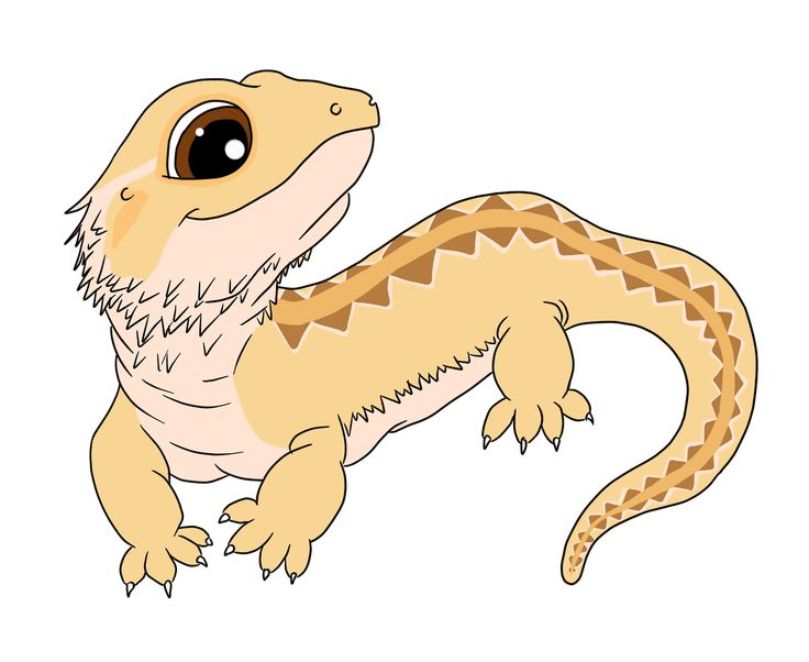 Godzilla clipart bearded dragon Pinterest about  on images