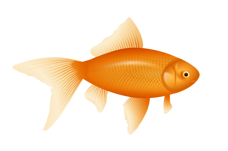 Line Art clipart golden fish Com collection images Goldfish Clipartion