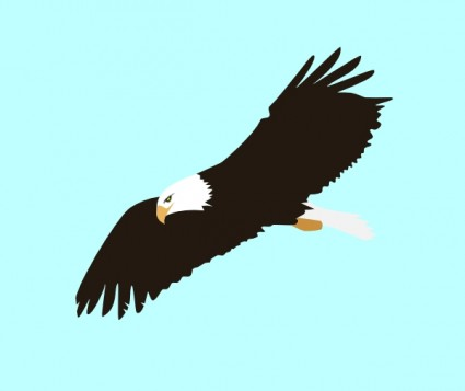 Gallery clipart soaring eagle  Black And eagle%20flying%20clipart%20black%20and%20white Cute