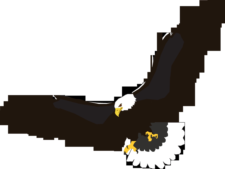 Brds clipart baaz Image Eagle image PNG flying