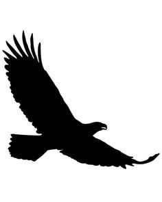 Gallery clipart soaring eagle Pinterest best Pins eagles ·