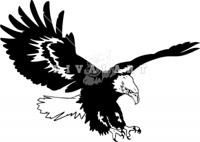 Gallery clipart soaring eagle Black And soaring%20eagle%20clipart%20black%20and%20white Soaring Clipart